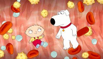 Family Guy, Fox